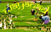 Wayanad